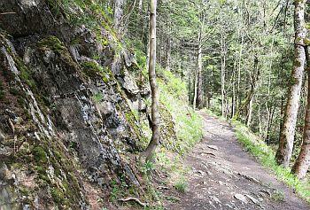 Okertal Wanderweg im Harz